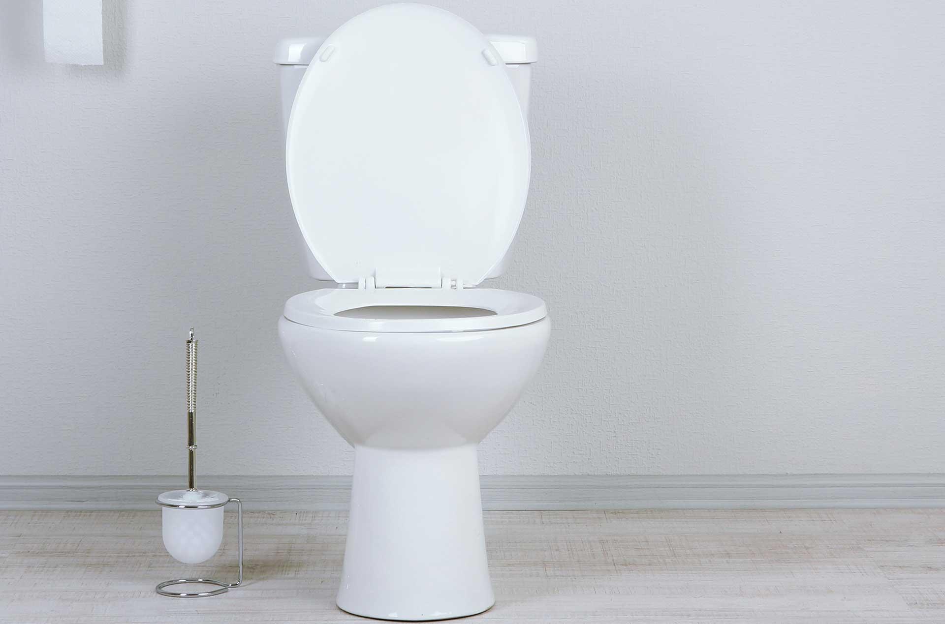 Desentupimento de vasos sanitários e pias